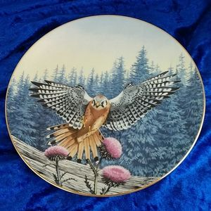 Vintage Hamilton Collection American Kestrel Plate
